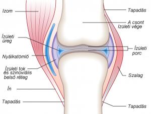 térdízületi serozus bursitis hogyan kell kezelni